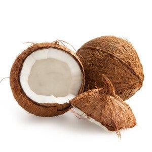 Coconut Oil - Cocos Nucifera