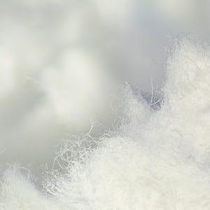 Sheet Fabric: Cellulose Fibe